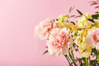 Bouquet of pink carnations and yellow matthiola with green branches. Design concept of holiday greeting with carnation bouquet on pink background