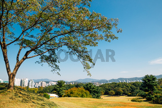 Green forest and modern buildings at Olympic park in Seoul, Korea