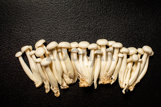 Shimeji mushroom or White beech mushrooms on black background.