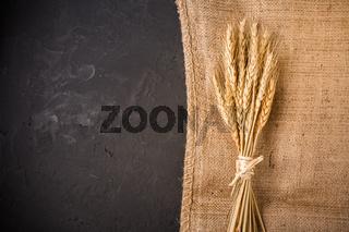 Ears of grain. Golden ears of wheat on burlap textile