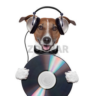 music headphone cd dog