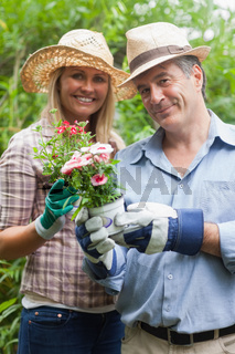 Man and woman holding a flower pot