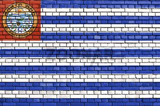 flag of Santa Ana, El Salvador painted on brick wall
