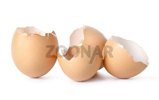Empty eggs shell