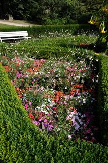 Blumenbeet mit Gaura und Impatiens