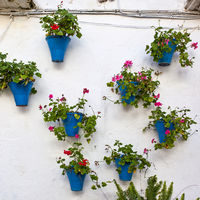 House in Cordoba decorated with flowerpots