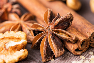Star anise walnut cinnamon at christmas time on cloth background