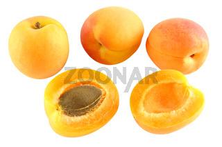 Vier Aprikosen - eine aufgeschnitten - freigestellt