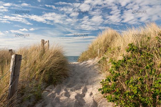 Weg zum Strand durch Dünen an der Ostsee
