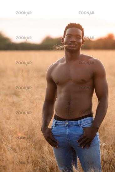 Handsome muscular man posing on rye field background