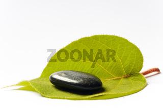 spa stein auf grünem blatt
