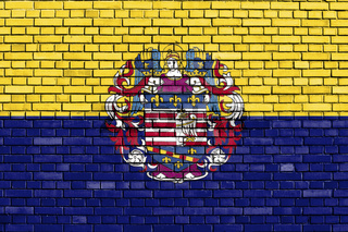 flag of Kosice, Slovakia painted on brick wall