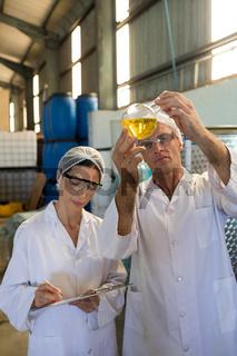 Technicians examining olive oil