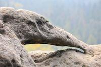 Kuhstall Felsentor im Elbsandsteingebirge