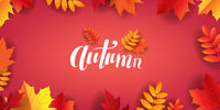 Autumn Poster With Lettering Text With Leaves