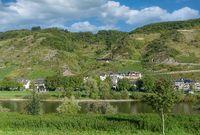 Weinort Valwig,Moseltal,Rheinland-Pfalz,Deutschland