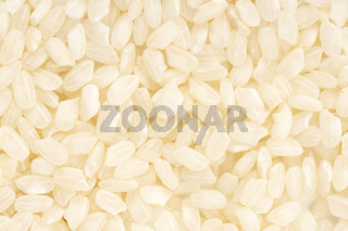 Uncooked rice background texture. Full frame