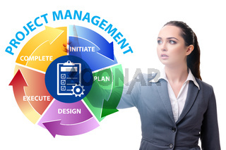 Businesswoman in project management different phases