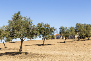 Landschaft im Alentejo, Portugal, landscape in the Alentejo, Portugal