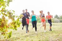 Gruppe Freunde trainiert Ausdauer und Fitness