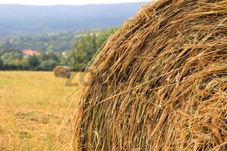 Stroh auf einem Feld
