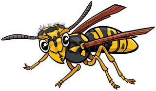 jellowjacket or wasp insect character cartoon illustration