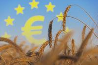 Agrarsubventionen in Europa
