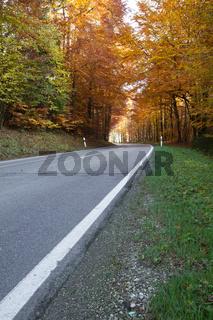 Herbstliche Landstraße in Bayern