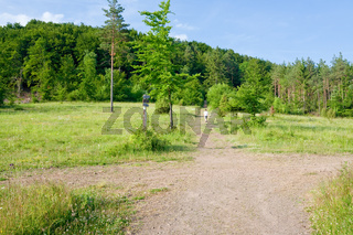 crossroad of forest ways in Eifel mountain