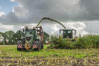Corn harvest vehicles frontal