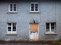 an old abandoned grey derelict house on a residential street with dirty broken windows and a boarded up door