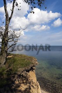Steilhang Ostseeküste