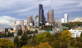 Seattle Downtown City Skyline Fall Folaige