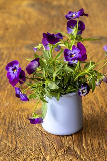 Stiefmütterchen in einer Vase auf Holz
