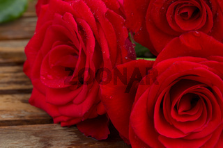 bouquet of red roses close up