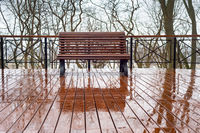 Empty bench rain park nobody