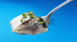 Pieces of salted herring on fork isolated on blue background