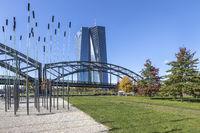 Europäische Zentralbank mit der Deutschherrnbrücke und herbstlichen Bäumen im Hafenpark in Frankfurt am Main
