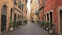 Morning in Rome. Via dei Coronari (flower street)