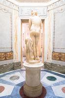 Roman antique statue of Capituline Venus in marble. Rome, Italy
