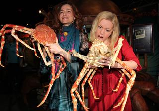Alexandra Kamp und Gerlinde Jänicke begrüßen die 'Japanese Spidercrabs' im AquaDom  SEA LIFE Berlin