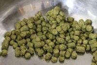 grüne Hopfenpellets auf Metall