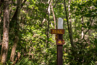 Trail signpost in forest showing the way on the pathway