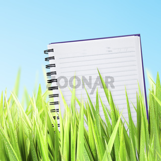 Green grass with a notepad