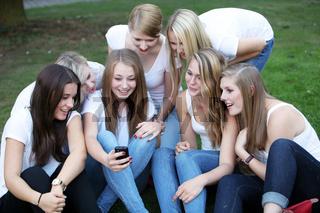 Sieben junge Mädchen sitzen im Gras und lesen auf ihrem Handy