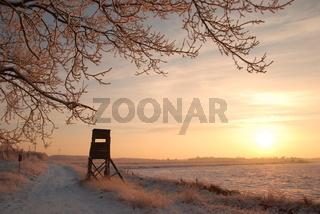Winterabend im Moor