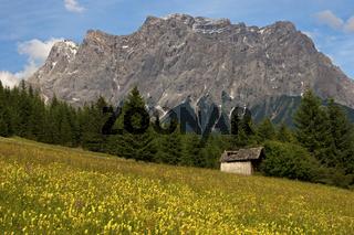Wettersteingebirge mit Zugspitze, Tirol,Österreich