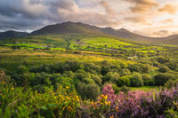 Sunset at the foothill of Carrauntoohil mountain, MacGillycuddys Reeks mountains