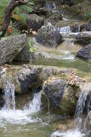 Wasser im Fluß