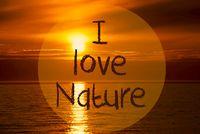 Romantic Ocean Sunset, Sunrise, Text I Love Nature